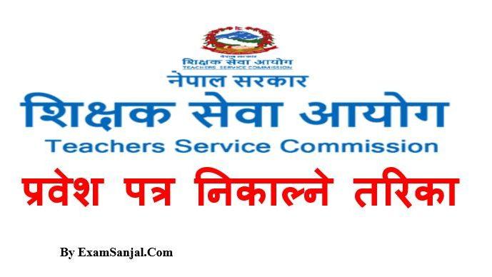 Teacher License Admit Card Download Online