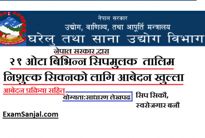 Free Skill Training Application open by Nepal Government. ( Business Oriented Skill Oriented Training)