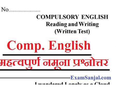 SEE Exam 2076 Important Model Questions English