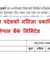 Education Cluster Contingency Plan 2020, Nepal Education Cluster