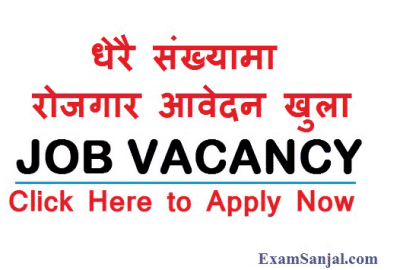Latest New JOB Vacancy Notice Government Company NGO Project