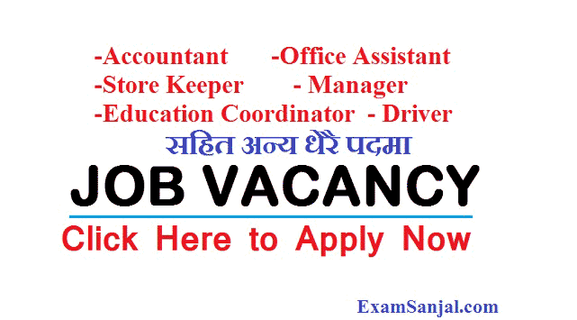 JOB Vacancy Post Accountant Manager Store keeper & Driver