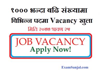 JOB Vacancy Notices More than 1000 Jobs Vacancy Nepal