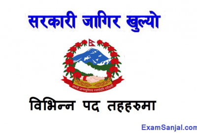 Local Level Job Vacancy Notice in various posts sthaniya Taha