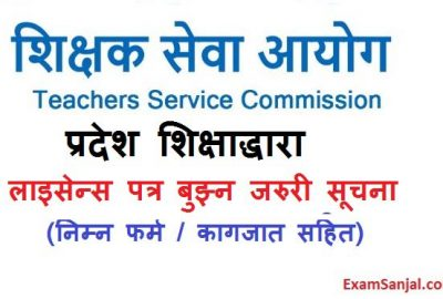 Teaching License Shikshak License Distribution Notice by EDD