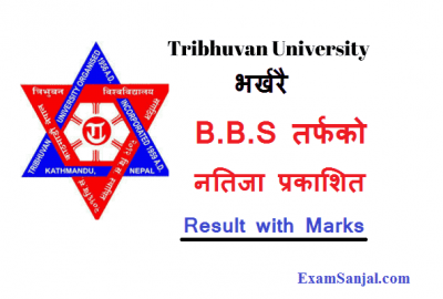 BBS Result Published by Tribhuwan University Results BBS