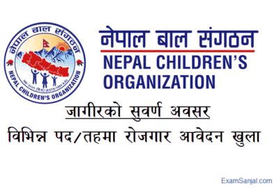 Nepal Bal Sangathan Nepal Children Organization NCO Job Vacancy Apply Now
