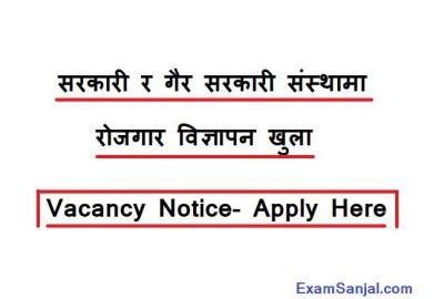 Job Vacancy Notice Nepal Government & Private Sector JOB Vacancy