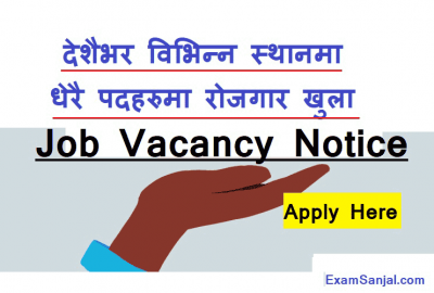 Job Vacancy Notice by Local Level Government & Organisations