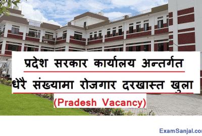 Gandaki Pradesh Lok Sewa Job Vacancy Pradesh Lok Sewa Vacancy