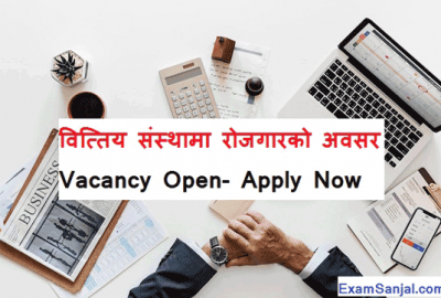 Manushi Laghubitta Bittiya Sanstha Job Vacancy Notice