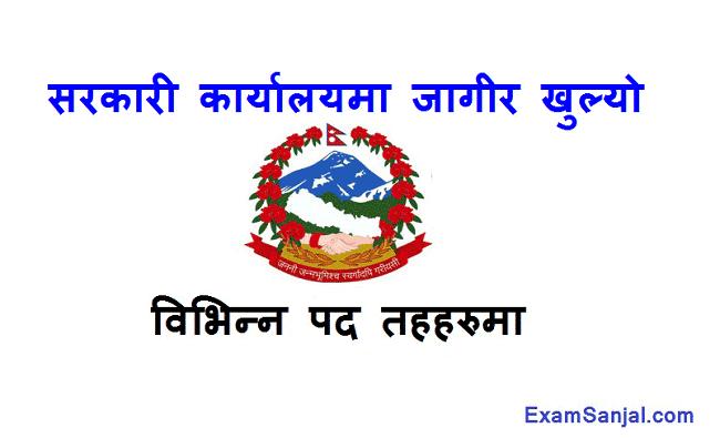 Khani Tatha Bhugarbha Bivag Mines & Geology Dept Govt Job Vacancy