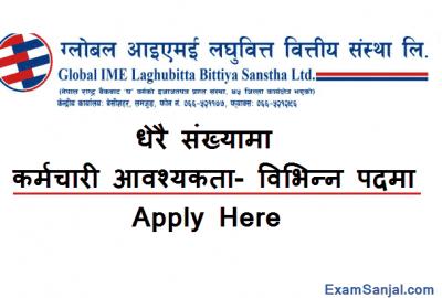 Global IME Microfinance Job Vacancy Notice Various posts Laghubitta Jobs
