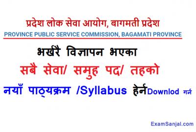 Syllabus of Bagmati Pradesh Lok Sewa Aayog Prasashan Account Lekha Internal Audit