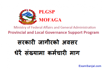 Provincial & Local Level Governance Support Program PLGSP Job Vacancy