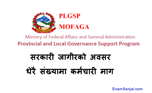 Provincial & Local Level Governance Support Program PLGSP Job Vacancy