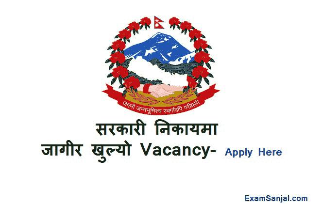 Government Project Job Vacancy for Economic Development Facilitator EDF