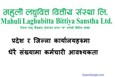 Mahuli Laghubitta Bittiya Sanstha Job Vacancy Notice in various posts
