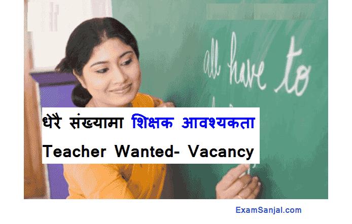 Teacher Principal Lecturer Professor Job Vacancy Notice