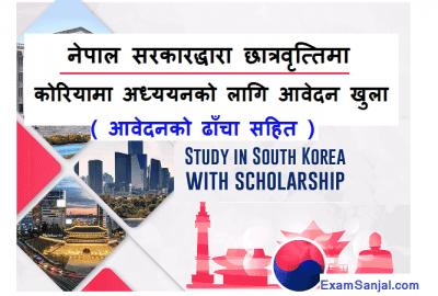 Government Scholarship Application Open for study in Korea University