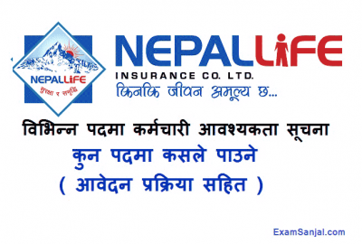 Nepal Life Insurance Company Job Vacancy Notice in various posts