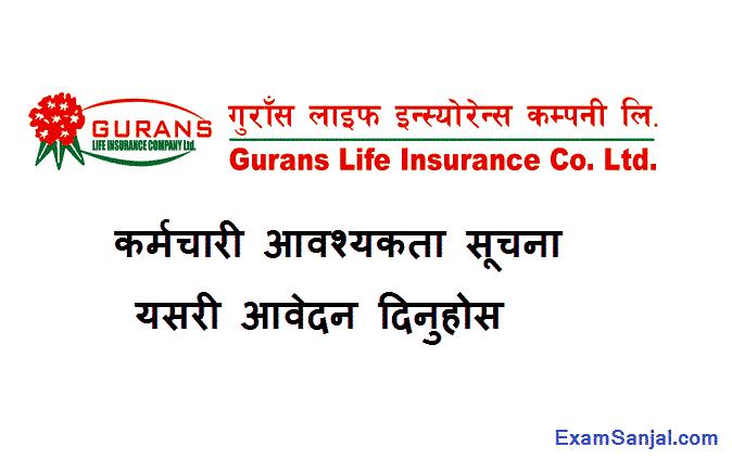 Gurans Life Insurance Company Job Vacancy Notice Officer Accountant CA