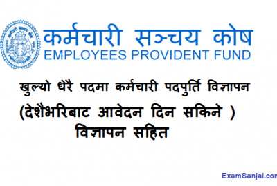 Karmachari Sanchaya Kosh Job Vacancy Notice Employment Provident Fund