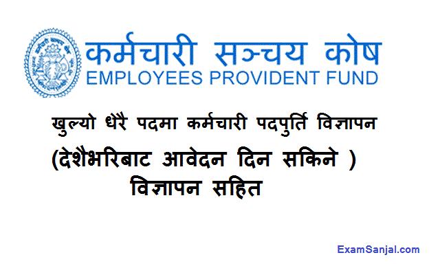 Karmachari Sanchaya Kosh Job Vacancy Notice Employment Provident Fund