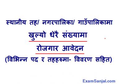 Local Level Gaupalika Nagarpalika Job Vacancy Sthaniya Taha
