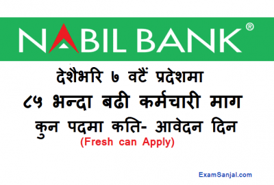 Nabil Bank Vacancy Notice Trainee Assistant & Management Trainee