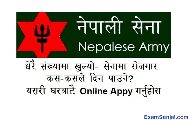 Nepal Army Prabidhik Technical Officer Job Vacancy Nepali Sena Apply