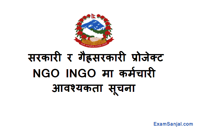 NGO INGO Project Job Vacancy UNDP FAO UNM