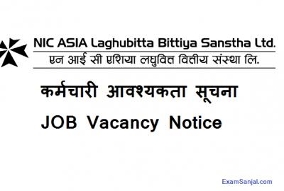 NIC Asia Laghubitta Bittiya Sanstha Job Vacancy Notice