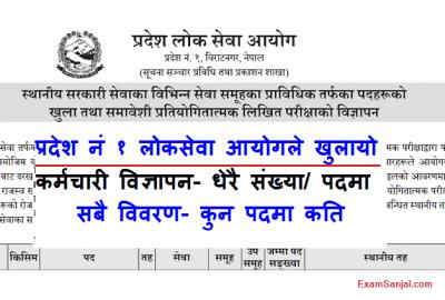 Pradesh 1 Lok Sewa Aayog Vacancy Notice Local Level Vacancy