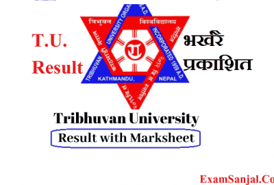 BEd 4th Years & BSc 4th Years result published by Tribhuwan University