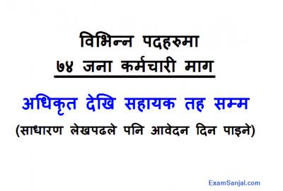Madhya Bhotekoshi Hydropower Company Job Vacancy Notice