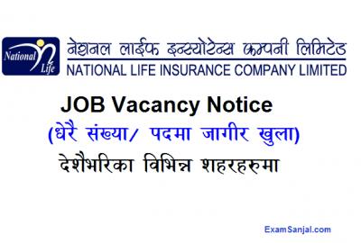 National Life Insurance Company Job vacancy notice Nepal