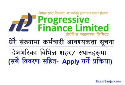 Progressive Finance Job Vacancy Notice Banking Finance Career
