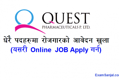 Quest Pharmaceuticals Company Job Vacancy Notice Medicine Company