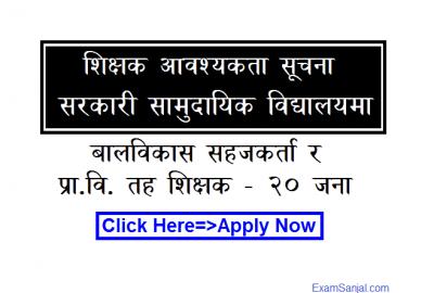 Government Sarkari School Teacher Job Vacancy Notice Apply Teacher