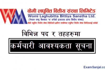 Womi Laghubitta Job Vacancy Notice Banking Career Jobs Nepal